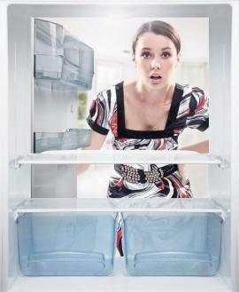 Nová lednička