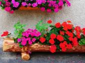 Zavěšený truhlík a mobilní nádoba ze dřeva
