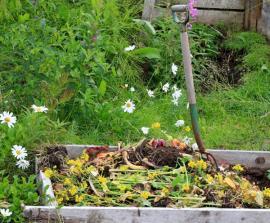Kompost před zasypáním zeminou