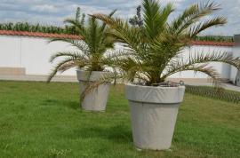 Betonové nádoby na rostliny