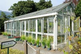 Prostorný skleník z plastového rámu a okennních křídel - po konstrukční stránce samostatně stojící obdoba zimní zahrady
