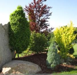 Použití mulčovací kůry a okrasného kamene