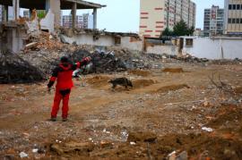 Foto z ukázky výcviku záchranářských psů