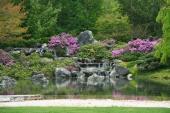 Zahradní rybníček je též typickým prvkem japonských zahrad