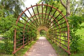 Pergola, která po popnutí rostlinami zastíní zahradní cestu