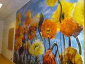 Malba na stěnu
