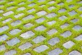 Kamenné dlažební kostky usazené tak, že obrůstají trávou (pravý opak zatravňovacích dlaždic)