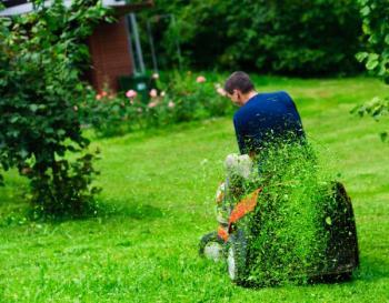 Mulčování - posekaná a rozšmelcovaná tráva není sekačkou sbírána do koše, ale rozhazována po porostu