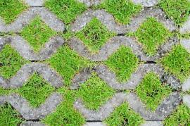 Betonová zatravňovací dlažba zpevní i silně svažité plochy, vhodnější je však zatravňovačka plastová, jelikož nenasákne vodu a nebere ji tak rostlinám
