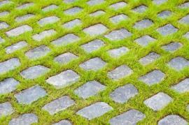 Opak zatravňovací dlažby - kamenné dlažební kostky jsou položené tak, že obrůstají trávou