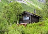 Kouzlo severských zelených střech