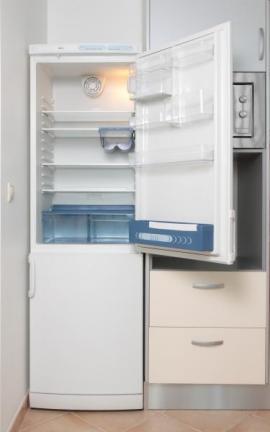 Chladnička s mrazákem - běžné spotřební zboží