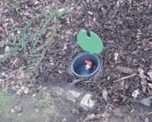 Umístění postřikovače mimo trávník je nejlepším řešením