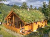 Srubová stavba RD se zelenou střechou