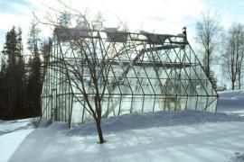 Osamělý skleník v zimě