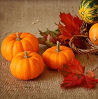 Podzim je štědrý na barvy, dekorační materiál, ale i plody