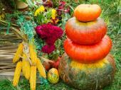 Podzimní aranžmá, to však nejsou jen dušičky
