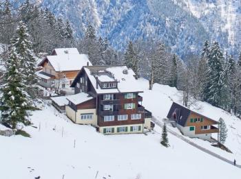 Střechy domů v horách