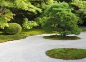 Štěrk v japonské zahradě