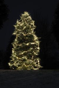 Osvětlení stromku na zahradě v jednom neutrálním tónu