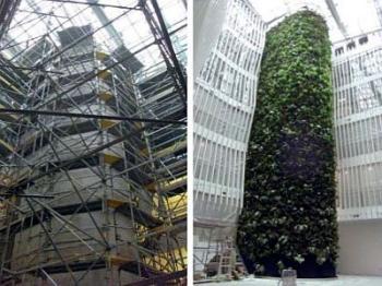Konstrukce zelené stěny před a po osázení rostlinami