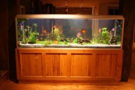 Akvárium vyrobené na míru včetně dřevěné masivní skříňky a krytu
