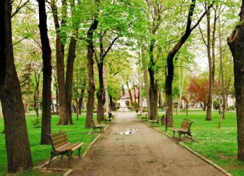 Jaro v parku