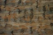 Imitace kamene - detail povrchu