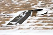 Poškozená střecha z asfaltových pásů