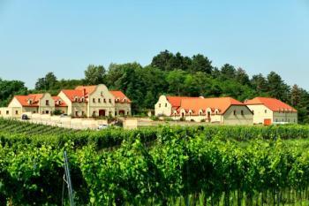 Vinice a komplex hospodářských budov