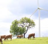 Přírodní zdroje energie