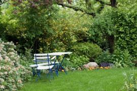 Při rekonstrukcích starých zahrad jsou respektovány původní dřeviny