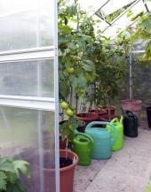 Klasika - dutinkový polykarbonát ve skleníkové konstrukci