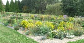 Extenzivní trvalková výsadba v průhonické dendrologické zahradě
