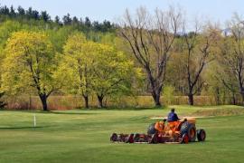 Úprava travní plochy