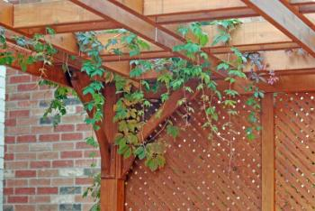 Treláž může tvořit některou ze stěn pergoly a vypadá dobře i bez popínavých rostlin