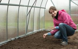 Výsev ve skleníku