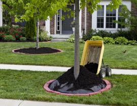 Přisypávání kompostu smíseného s rašelinou a kůrou