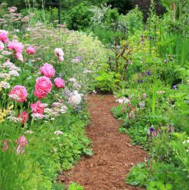 Okrasná zahrada