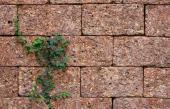 Betonové tvarovky