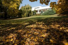 Podzimní atmosféra v zahradě