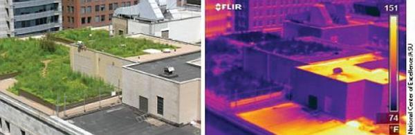 Snímek z termokamery dokazuje, že zelená střecha je v letních měsících chladnější než běžná střecha