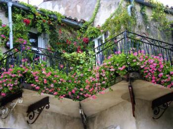 Když se balkón promění v zahradu