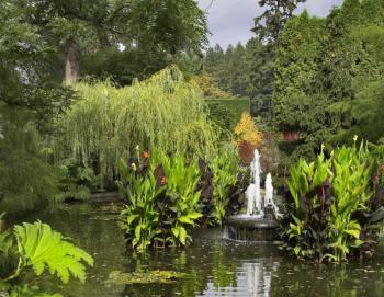 Zahradní jezírko s fontánou
