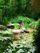 Zahradní jezírko v japonské zahradě
