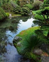 Jezírko jako dominanta japonské zahrady