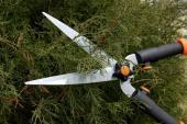 Nůžky na stříhání živého plotu
