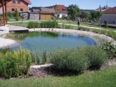 Koupací zahradní jezírko