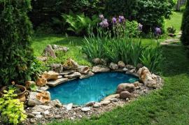 Miniaturní zahradní jezírko