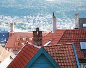 Oplechování střech